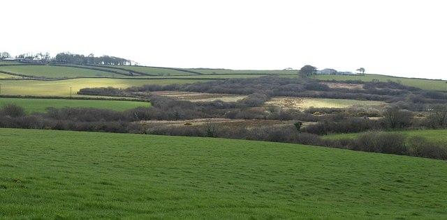 Waldon valley near Dinworthy