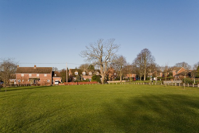 The green at the Sawmills, Durley