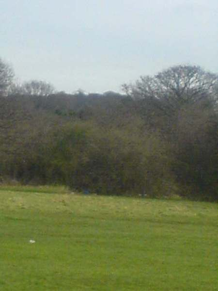 Clayhall, The Glade