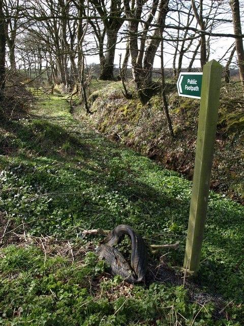 Footpath near Whiteley