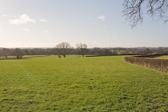 Fields between Hill Farm and Netherhill Farm, Durley