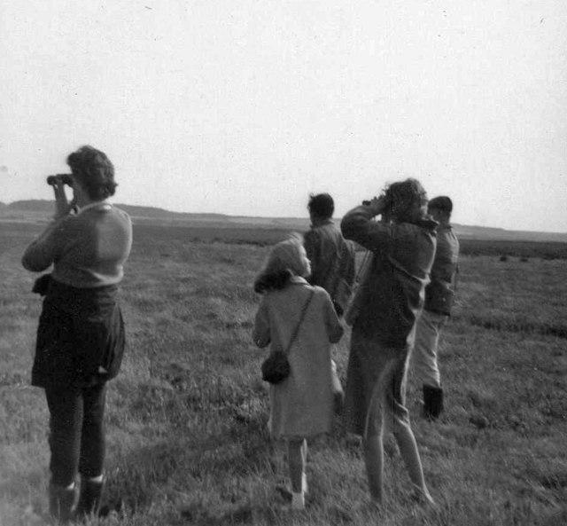 Bird watching on Scolt Head Island, Brancaster, Norfolk taken in 1961
