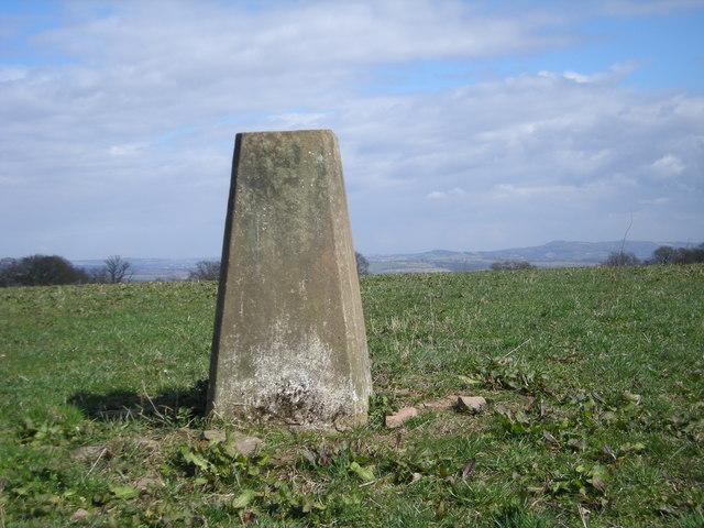 Triangulation point off Trimpley Lane
