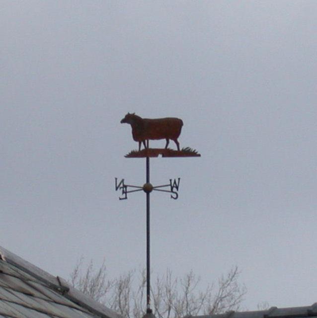 Sheep weather vane