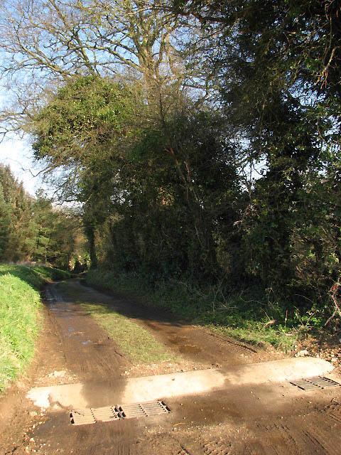 Footpath through Dudwick Estate