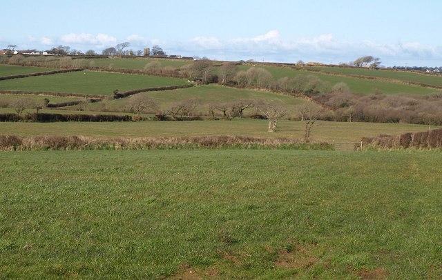 Valley near Woolsery