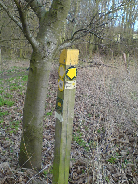 Junction of footpaths north-east of Mace Farm