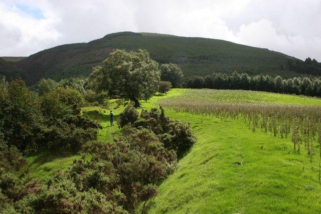 In the Hengwm valley.