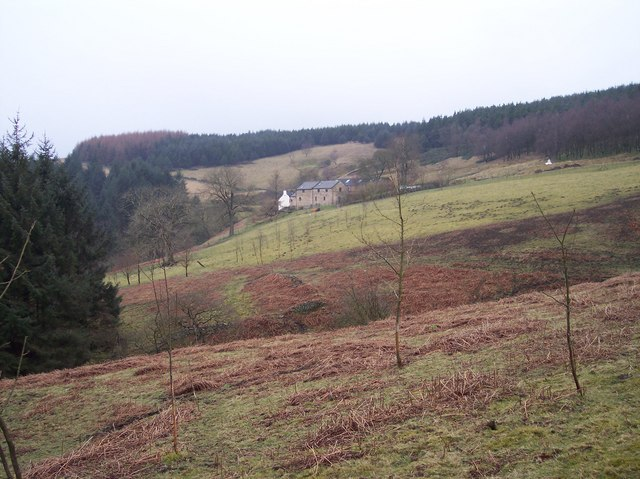 Lockerbrook Farm