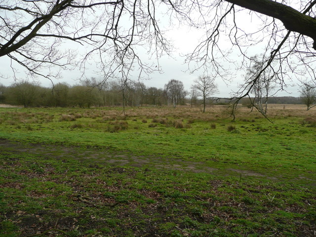 East Anglian watershed