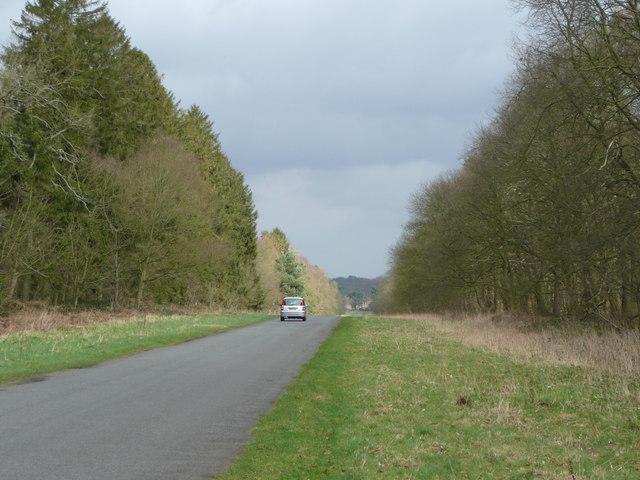Rushford Road, Euston, Suffolk