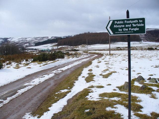 Moorland Track, Ballochan