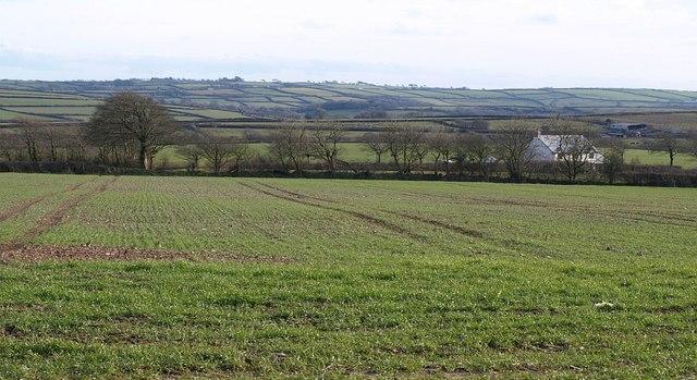 West of Parkham Ash