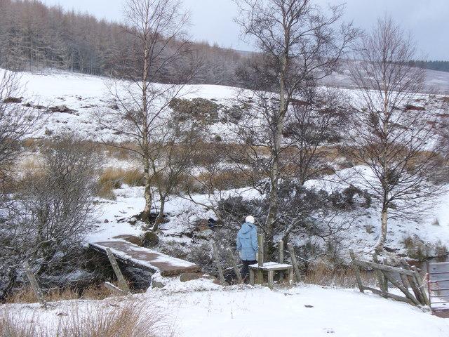 Footbridge by Ballochan
