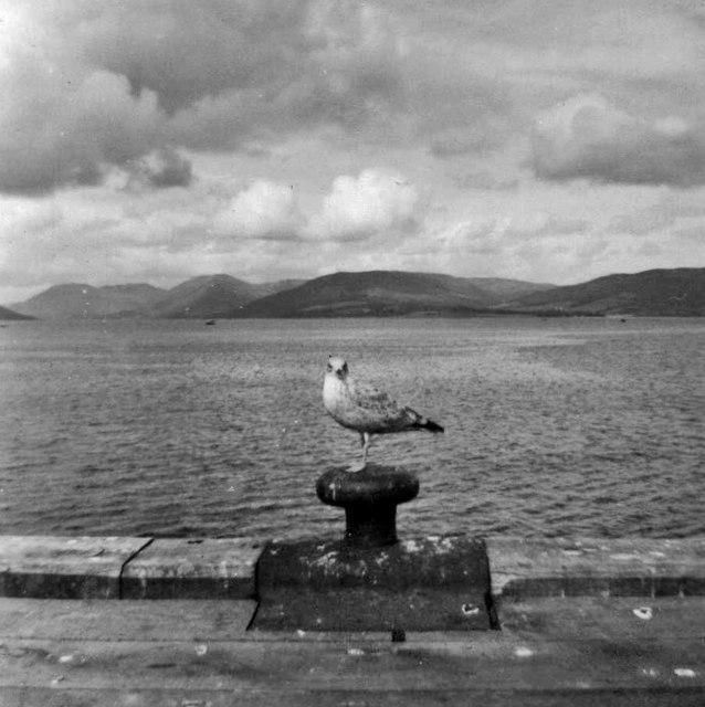 Looking across Firth of Clyde from Dunoon, taken 1962