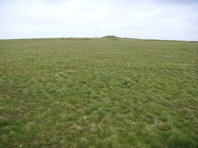 Near Condolden Barrow