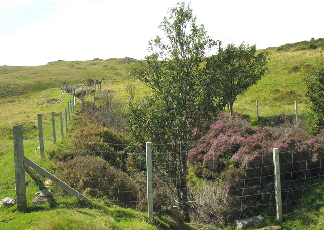 Fenced-off stopes