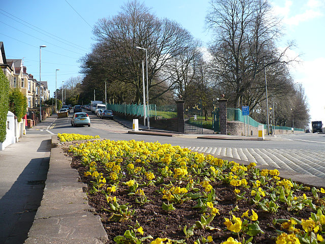 Junction of Waterloo Road and Cardiff Road