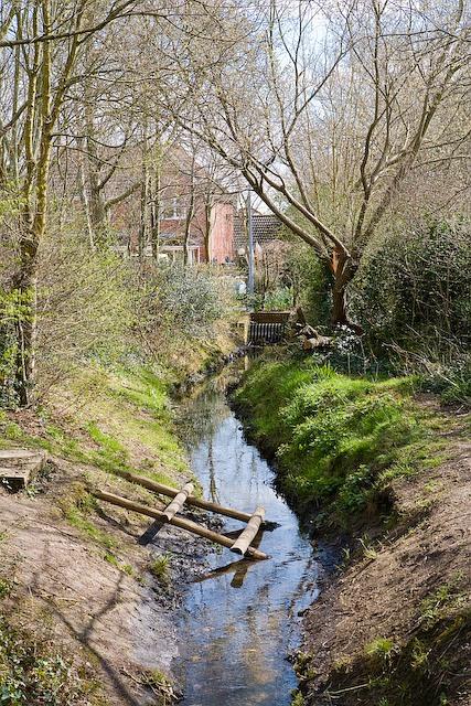 Stream running through housing in Denmead