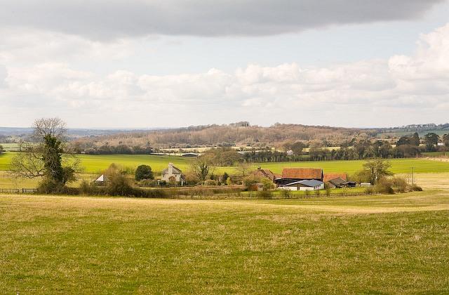 Shepherd's Down Farm, Dundridge