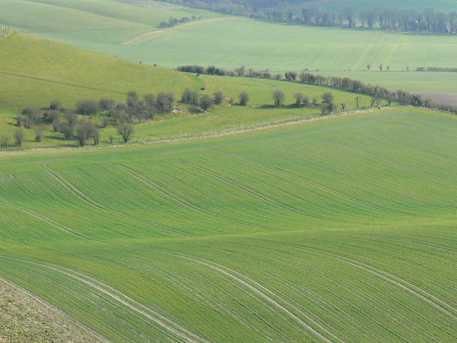 Farmland near Liddington Hill