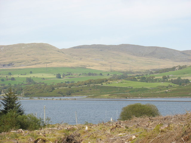 Llyn Trawsfynydd from the forest edge