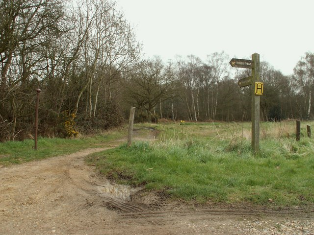 At the point where two bridleways meet