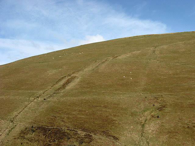 Seppings Hill