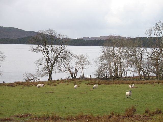 Loch Morar, Bracorina