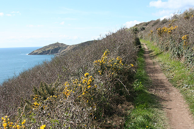 Malker with Rame: on the South West Coast Path 1