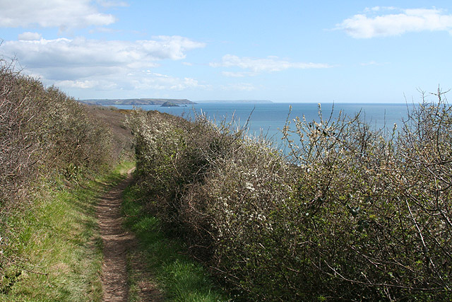 Malker with Rame: on the South West Coast Path 2