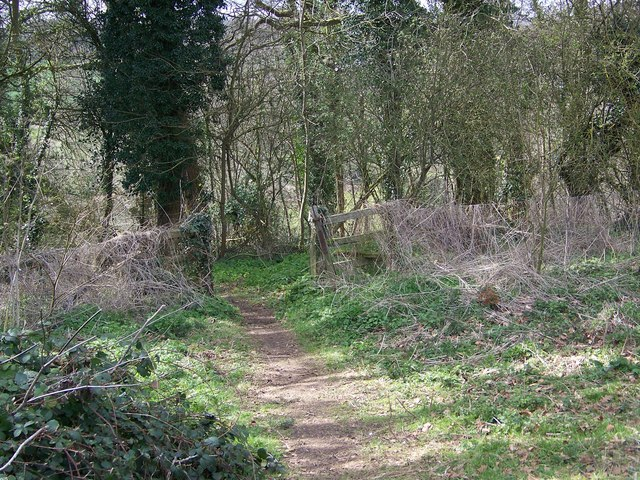 Footpath into Quarry Wood