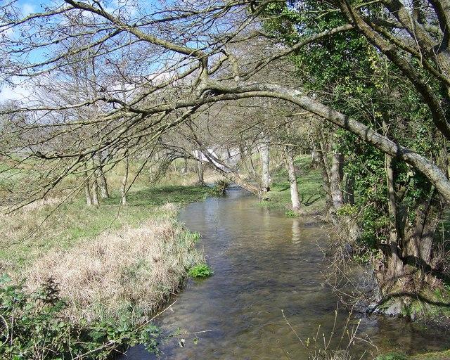 Fonthill Stream
