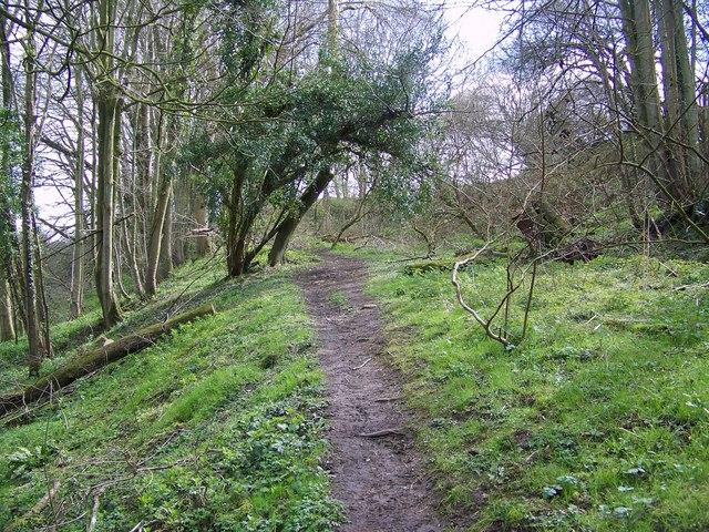 Footpath to Hindon Lane