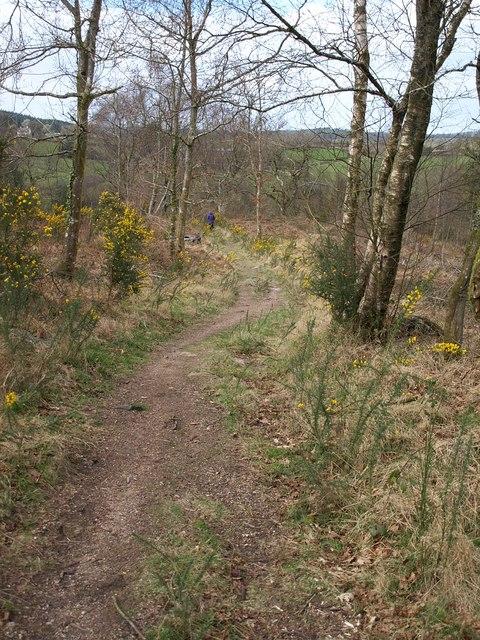 Dartmoor Way on Neadon Cleave