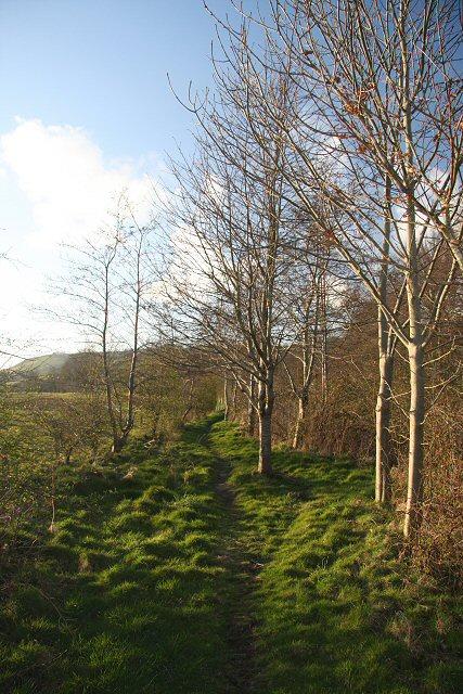 Footpath to Brynog