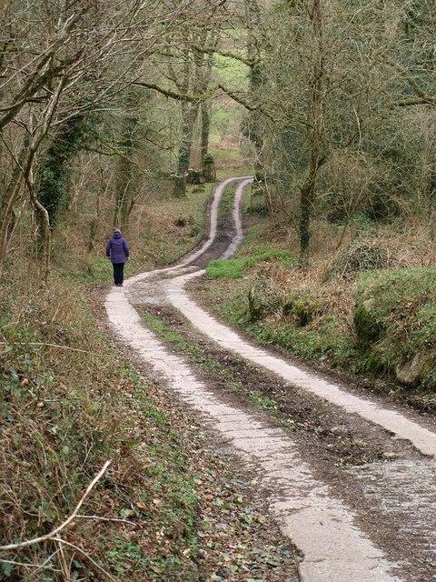 Bridleway to Foxworthy
