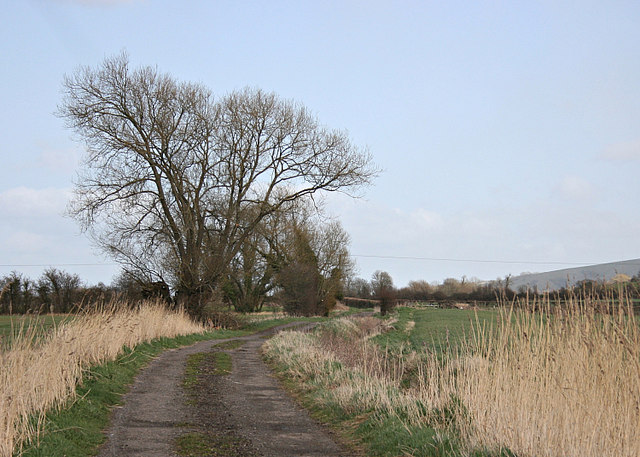 2008 : Lower Westbury Road