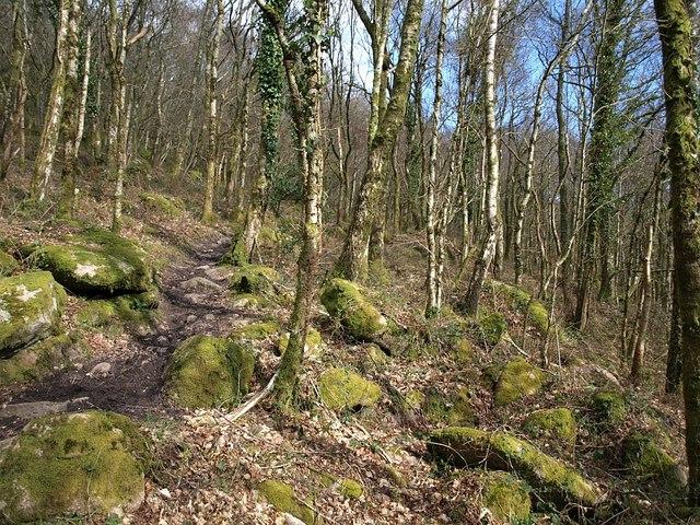 Bridleway across  Lustleigh Cleave