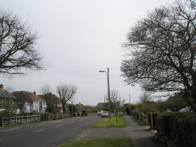 Sinah Lane in late March