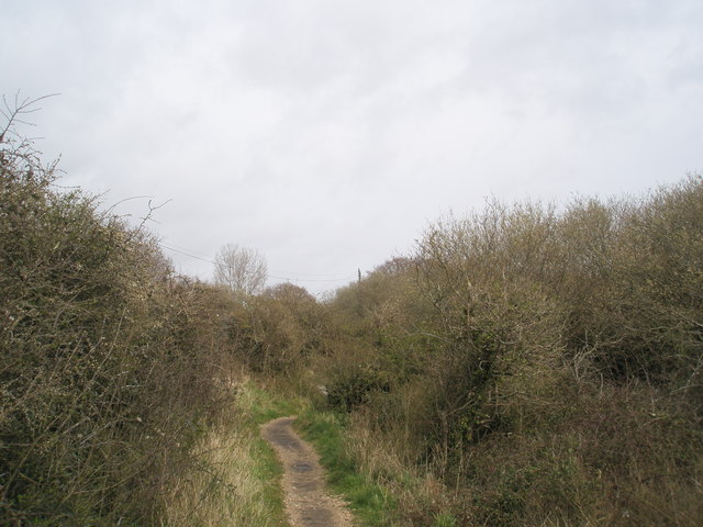 Path from Links Road to Sinah Common