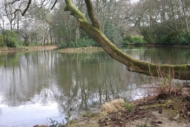 The Lake, Llanerchaeron