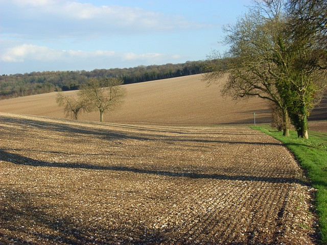 Farmland, Stokenchurch