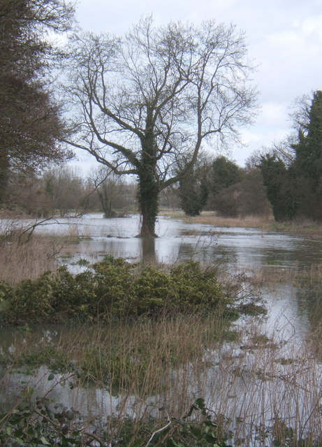 Flooded fields east of the Gipping, near Sproughton
