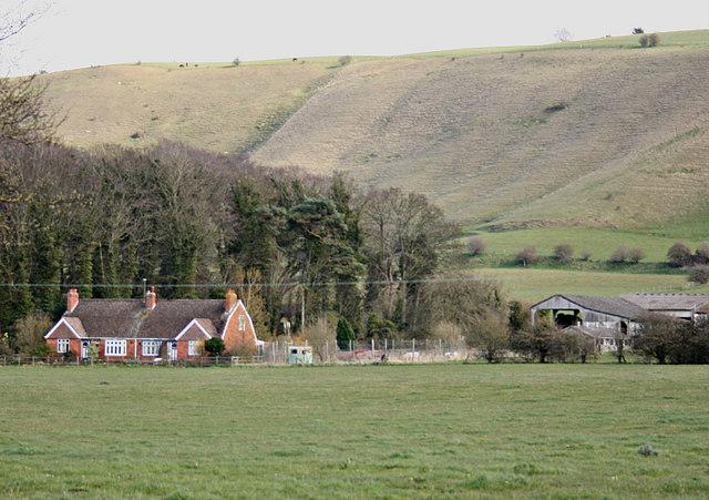 2008 : Town Farm near Westbury, Wilts
