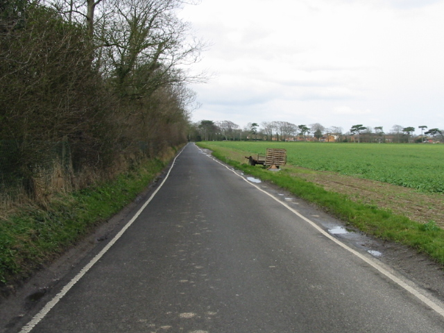 Looking W along Park Road towards Birchington
