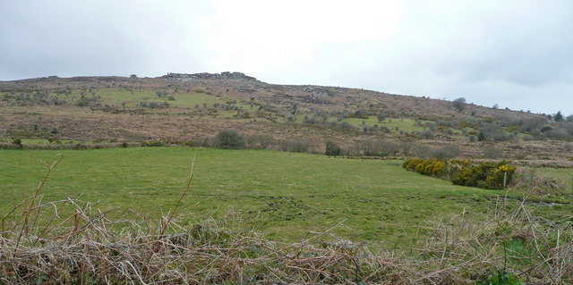 View towards Hawk's Tor