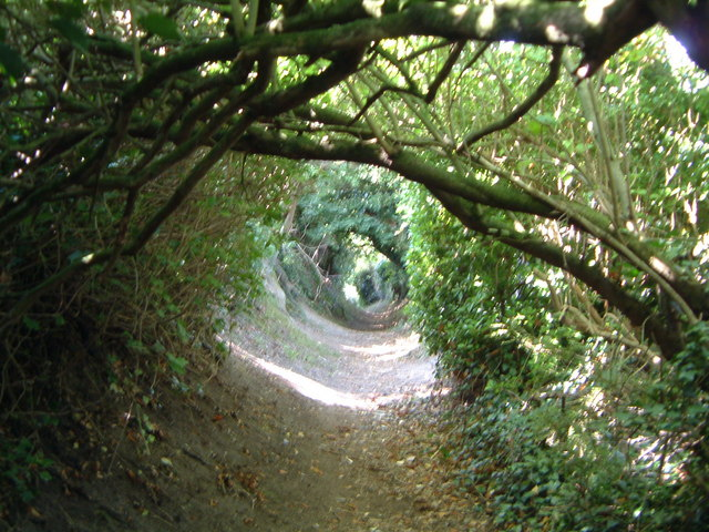 Footpath from Salthouse church