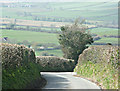 ST7060 : 2008 : Lane to Priston by Maurice Pullin