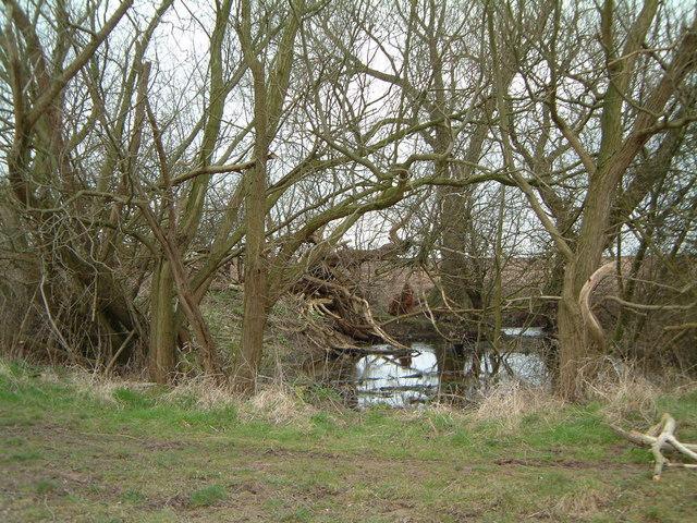 Dew Pond at West Leake